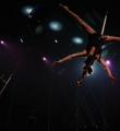 Link toLa poésie du Festival Mondial du Cirque de Demain