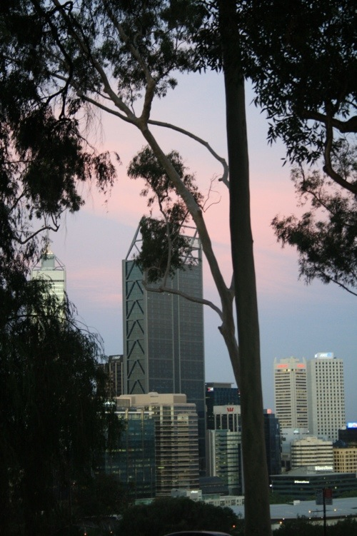 Kings Park Perth