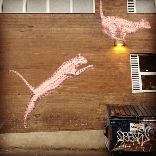 le chat des artistes montreal