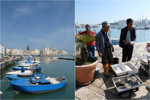 Tunisienne cherche homme pour mariage tunisie