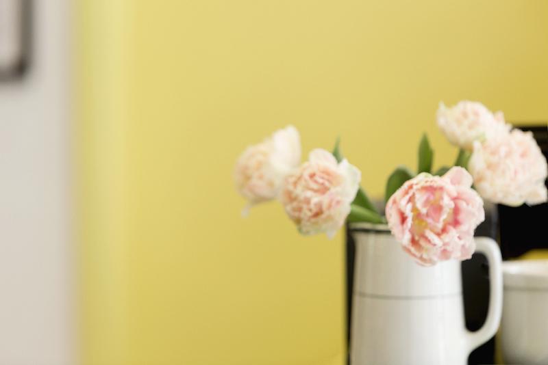 butterblume-mile-end butterblume fleurs Marie-Reine Mattera