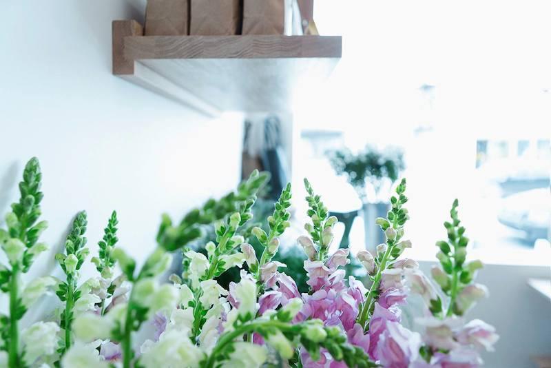 butterblume fleurs Marie-Reine Mattera