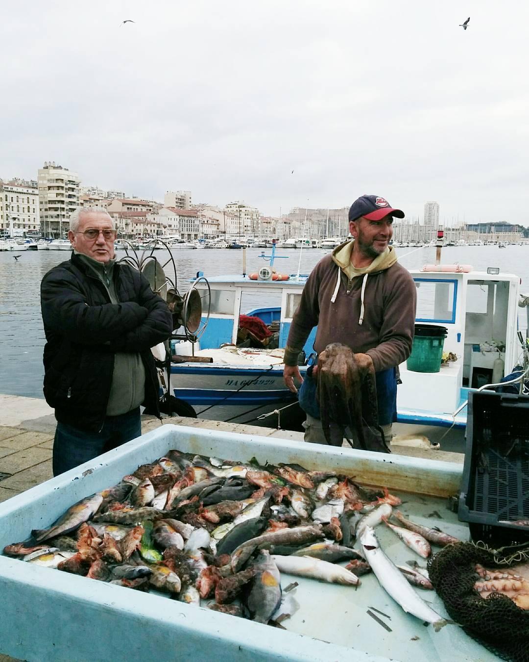 marche aux poissons marseille vieux port