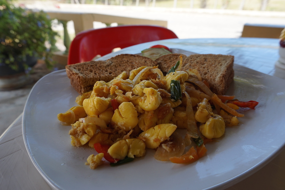 Pradys ackee saltfish treasure beach jamaique