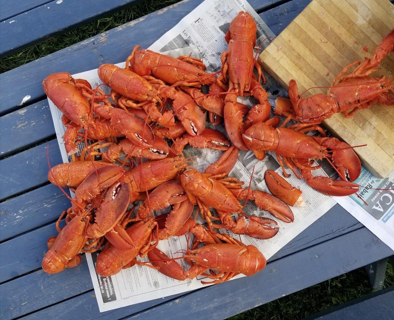 Les Iles de la Madeleine mess de homards de la renaissance des iles 2-min