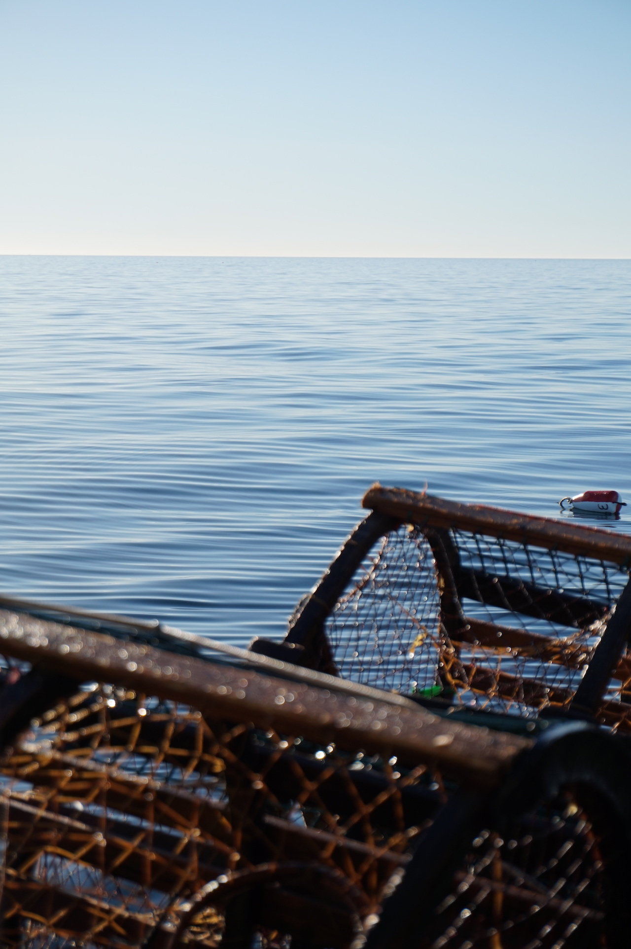 les iles de la madeleine casiers homards